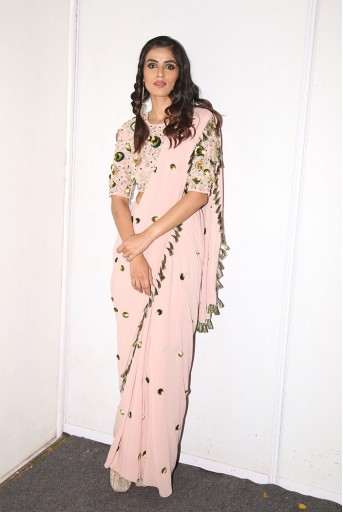 PS-FW597 Aleyna Rose Pink Georgette Choli and Saree