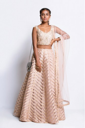 PS-FW443B Blush Silk Choli with Net and Brocade Lehenga and Net Dupatta