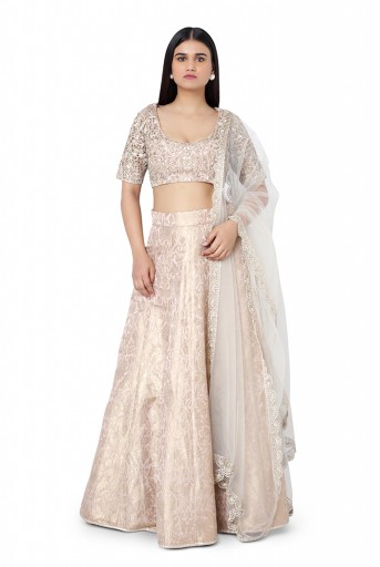 PS-FW496-B-1  Roe Pink Colour Silk Choli with Brocade Lehenga and Net Dupatta