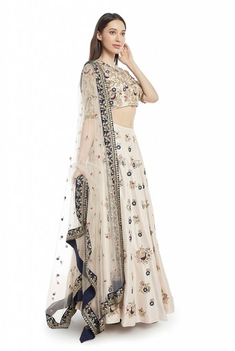 PS-FW580-B-3 Stone Colour Silk Choli and Lehenga with Net Dupatta