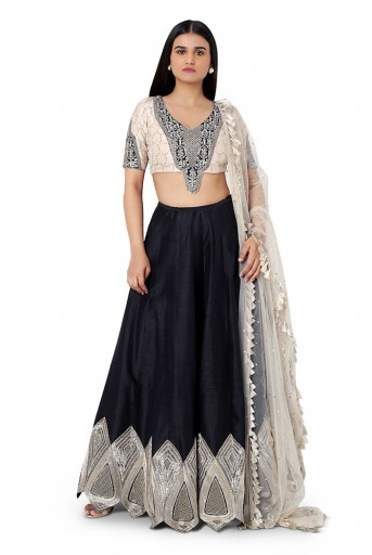 PS-FW573-B-1  Stone Colour Silk Choli with Net Dupatta and Black Colour Dupion Silk Lehenga