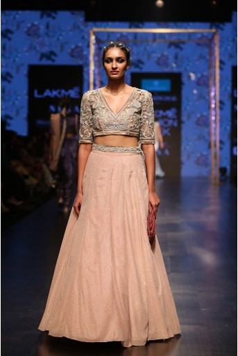 PS-FW562 Zahida Dusky Rose Organza Choli with Mukaish Georgette Lehenga